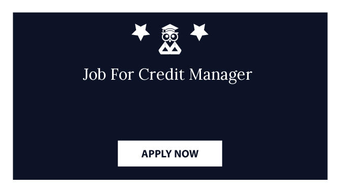 Job For Credit Manager