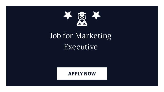 Job for Marketing Executive