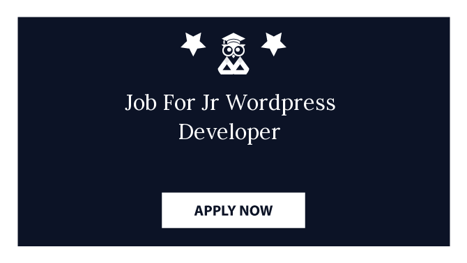 Job For Jr Wordpress Developer