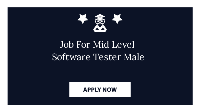 Job For Mid Level  Software Tester Male