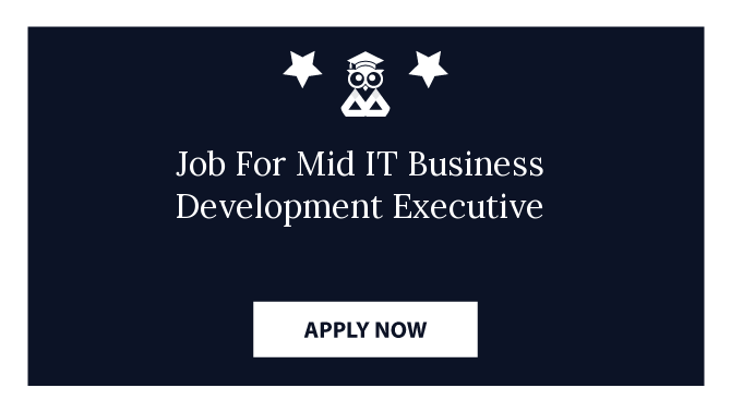 Job For Mid IT Business Development Executive