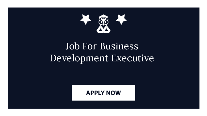 Job For Business Development Executive