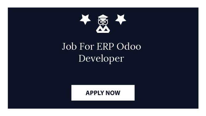 Job For ERP Odoo Developer