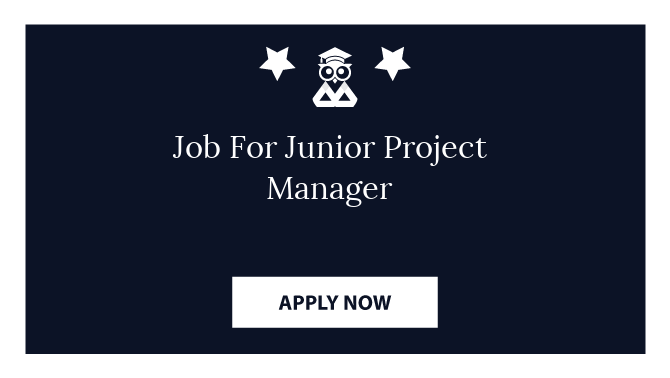 Job For Junior Project Manager