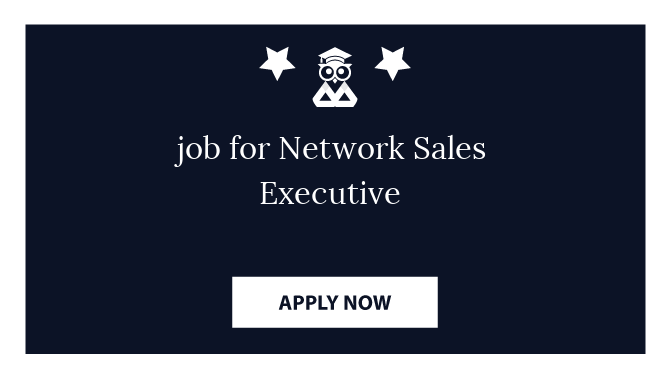 job for Network Sales Executive