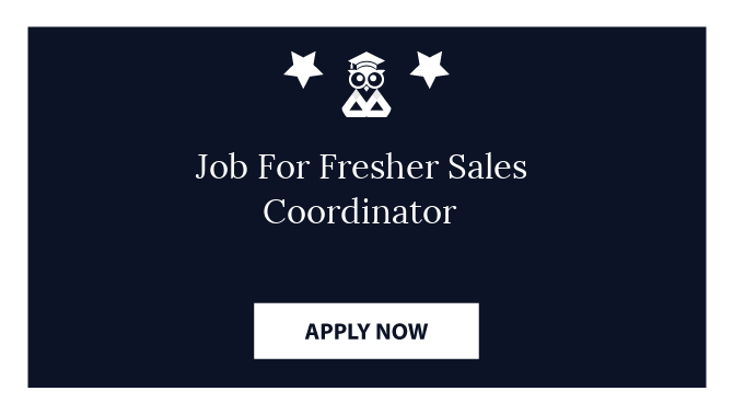 Job For Fresher Sales Coordinator