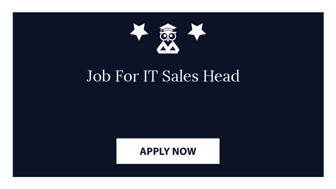 Job For IT Sales Head