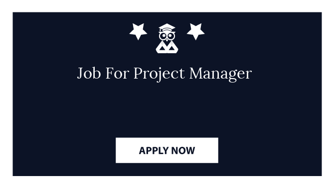 Job For Project Manager