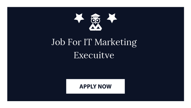 Job For IT Marketing Execuitve