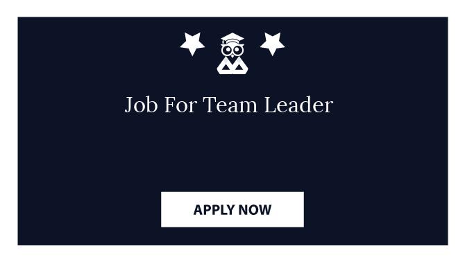 Job For Team Leader