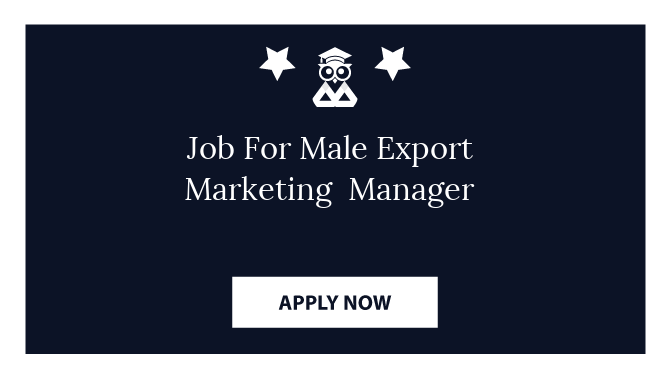 Job For Male Export Marketing  Manager