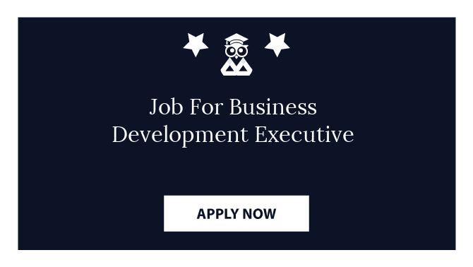 Job For Business Development Executive