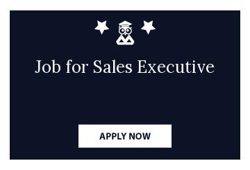 Job for Sales Executive