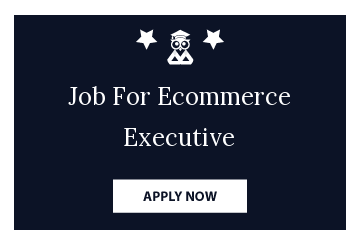 Job For Ecommerce Executive