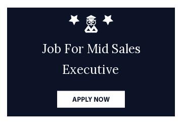 Job For Mid Sales Executive