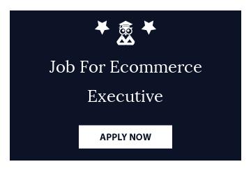 Job For Ecommerce Executive