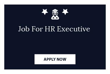 Job For HR Executive