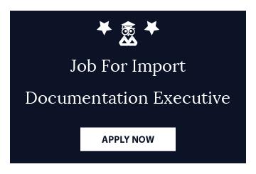 Job For Import Documentation Executive